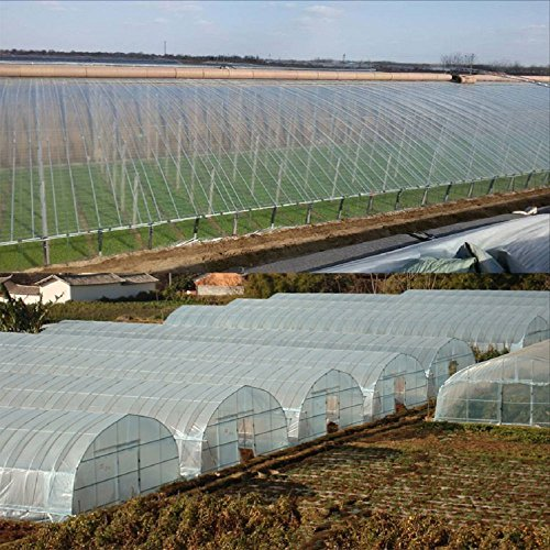 Clean Plastic Film Polyethylene Covering for Greenhouse and Grow Tunnel,6.3mil 16ftx16ft