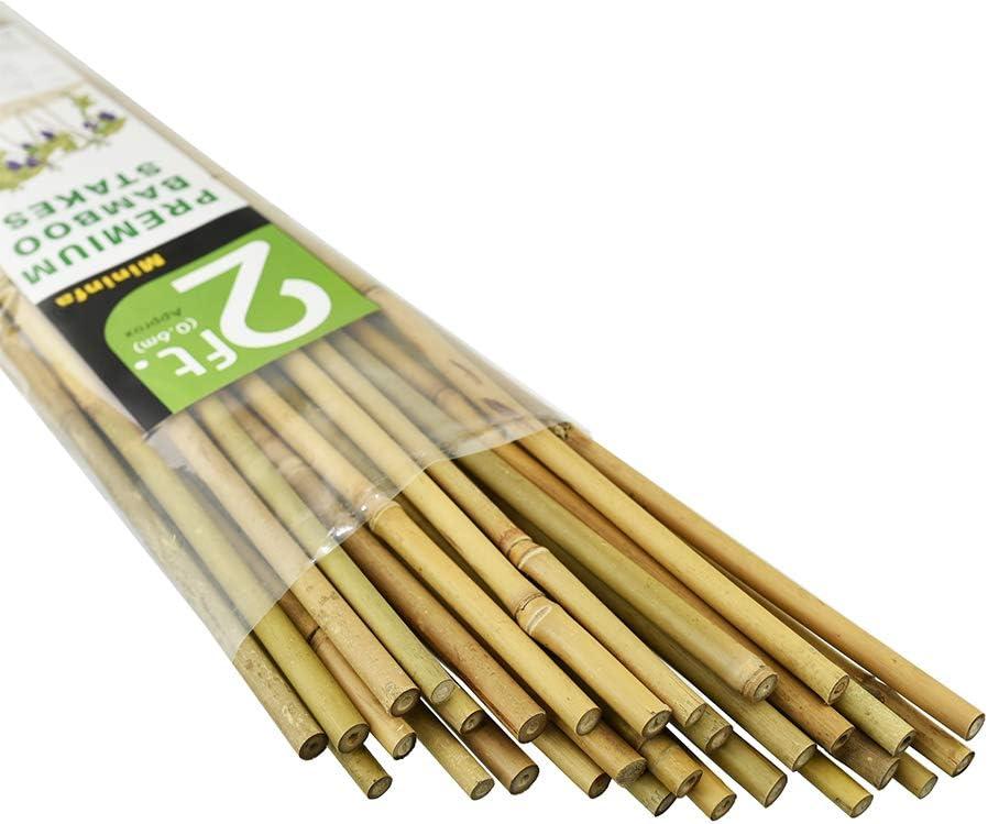 Mininfa Estacas de bambú Natural, estacas de jardín ecológicas ...
