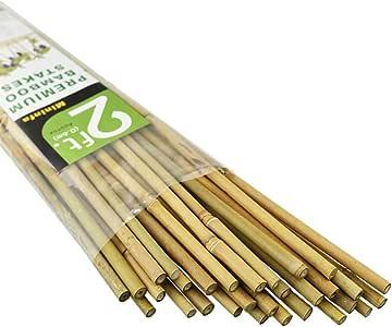Mininfa Estacas de bambú Natural, estacas de jardín ecológicas, estacas de Plantas para Escalada para Tomates, árboles, Frijoles, : Amazon.es: Jardín