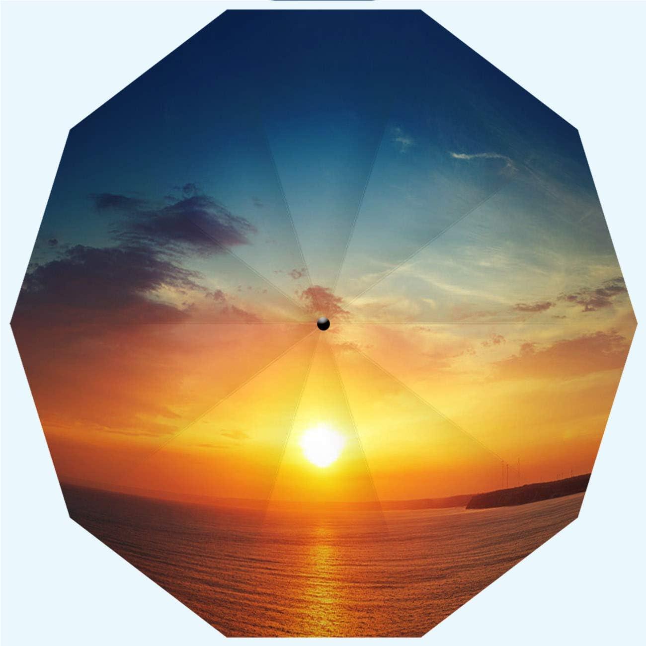 Men Automatic Opening and Closing,Big Sur Coastline,Windproof RLDSESS Outdoor Umbrella Ladies 10 Ribs Rainproof 42 Inches