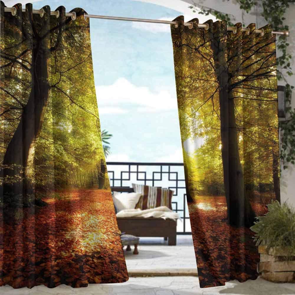 DILITECK - Cortina para pérgola, decoración de otoño, diseño de ...