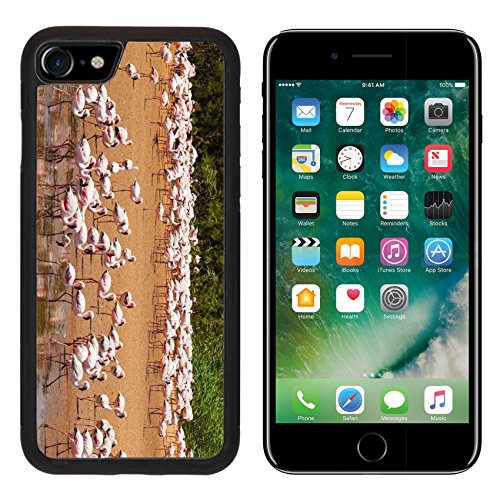 Lagoon Gravel (Luxlady Premium Apple iPhone 7 Aluminum Backplate Bumper Snap Case iPhone7 IMAGE ID: 24746473 Flamingos near Walvis Bay Namibia)
