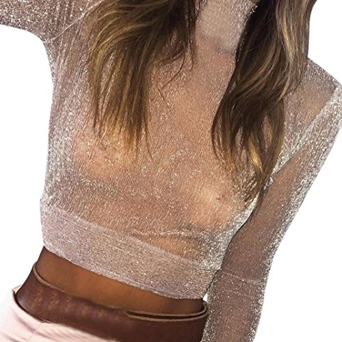 Minisoya Women's High Neck See Through Clubwear Mesh Sheer Blouse Long Sleeve Perspective T-Shirt Pullover Casual Crop Tops (Khaki, M) (Khaki Tan Crop)