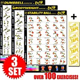 3 Pack Workout Banner Poster Build Muscle & Lose Fat With Fitness at Home Program With Dumbbells, Stability Ball & Bodyweight Exercises