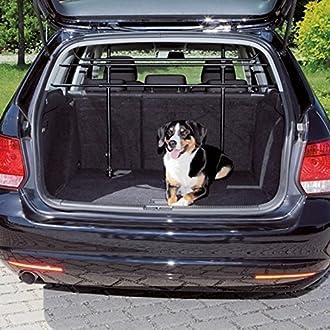 Auto Hundegitter Bild