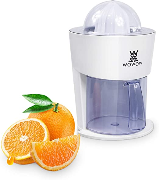 Home & Kitchen Kitchen & Home Appliances Powerful Motor for