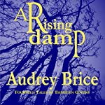 A Rising Damp: Fourteen Tales of Thirteen Covens, Book 1 | Audrey Brice