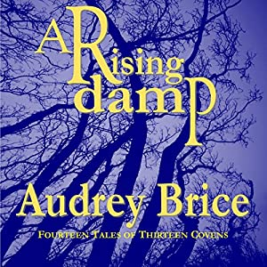 A Rising Damp Audiobook