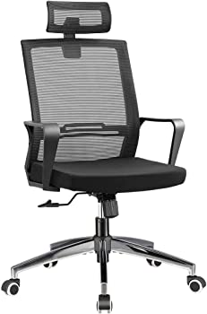 Younbo Office High Back Desk Chair with Lumbar Support Headrest Metal Base
