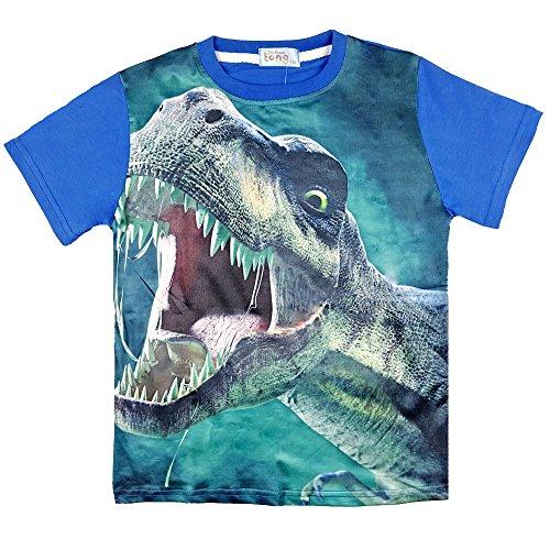 Boys Short T-Shirt, Original Dinosaur 3D Print Shirt, Sports Quick-Drying Sweatshirts