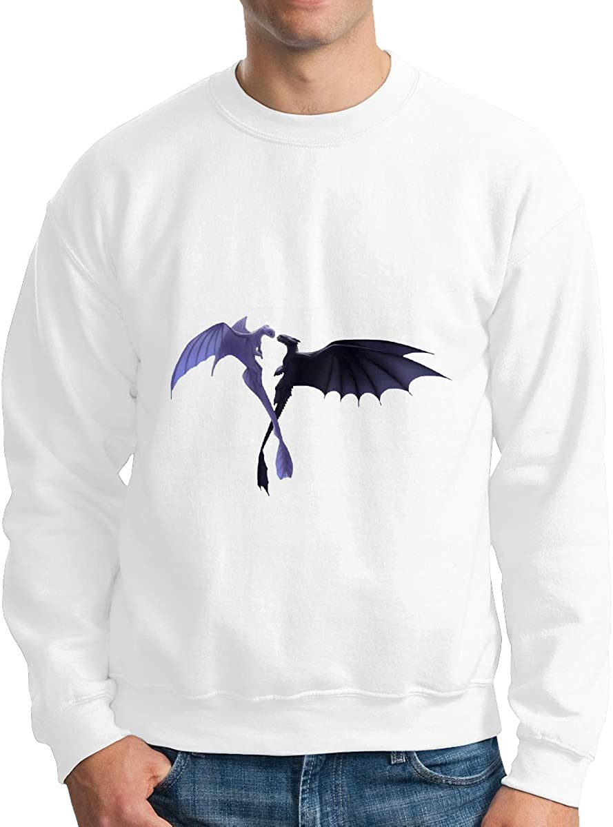 HsHdesign Pretty Night Light Fury Graphic Adult Mens Pullover Printed Campus Colors Pullover in 4 Colors