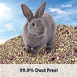 Kaytee Soft Granule Blend Bedding 27.5 liter