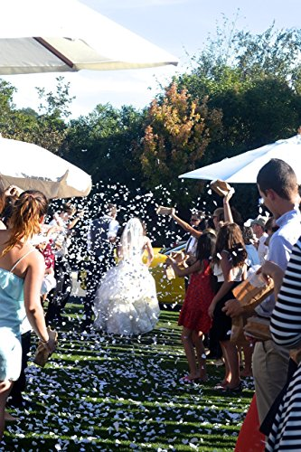 Shaped Biodegradable Tossing Wedding Confetti product image