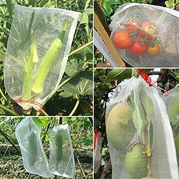 Amazon.com: agfabric Jardín de Malla Cubierta vegetal ...