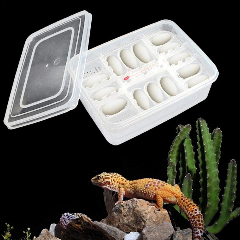 per Bruciare Geco eche Scatola per la Coltivazione di rettili con termometro Leoni Contenitore per rettili Professionale Lizard Small Climbing Pet brutapparati rettili per Uova