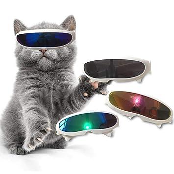 Amazon.com: Gafas de sol para gatos pequeños, bonitas para ...