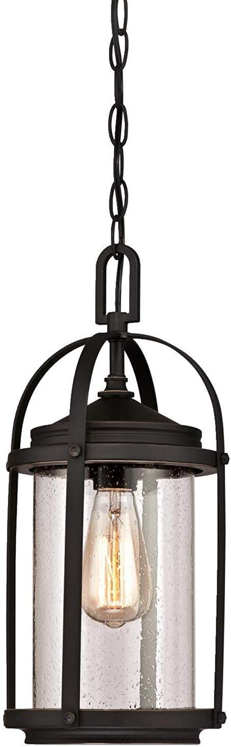 Westinghouse Lighting One-Light Outdoor Lighting,Oil Rubbed Bronze Finish with Highlights and Clear Seeded Glass (Grandvie Outdoor Pendant)