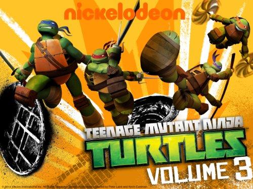 Ninjas in New York (Teenage Mutant Ninja Turtles Kraang Prime Toy)
