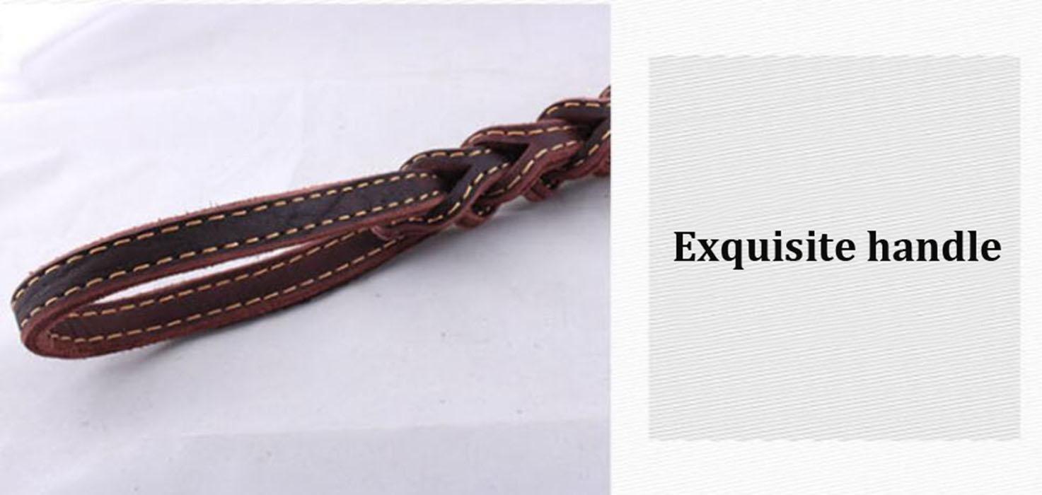 WYXIN Tissage en cuir court Traction Chien corde Manchon /à ressort Cha/îne de chien Laisse de traction en cuir pour grandes et moyennes