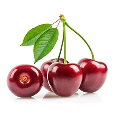 JingYu 10Pcs/Pack Cherry Tree Seeds, Sweet and Delicious Fruit Seeds for Garden and Farm Planting Cherry Tree Seeds : Garden & Outdoor