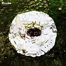Days to Come [Vinyl]