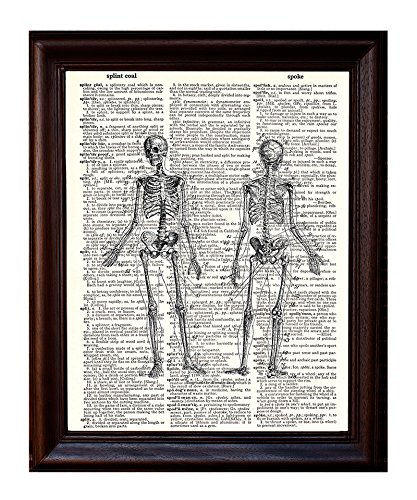 Anatomical Human Skeleton - Printed on Upcycled Vintage Dictionary Paper - 8x11 Anatomy Art Poster / Print