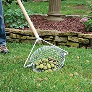 Amazon.com : Sweet Gum Ball Picker Upper Wizard : Garden