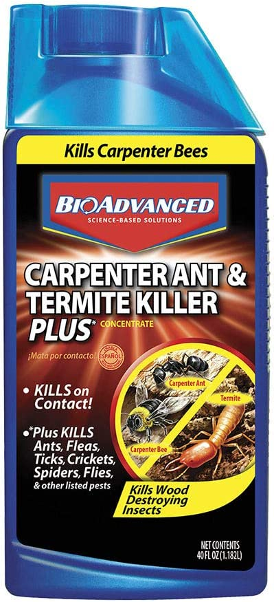 Amazon Com Bioadvanced 700310a Carpenter Ant And Termite Killer Plus Insect Killer And Pesticide For Outdoors 40 Ounce Concentrate Home Pest Repellents Garden Outdoor