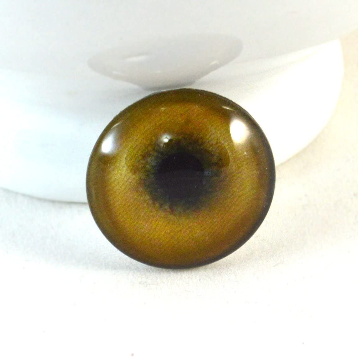 Cabujones de taxidermia de ojos de animales de 25 mm de 2,5 cm para joyer/ía o manualidades