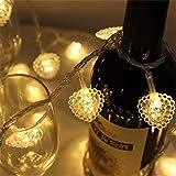 Heart-Shaped String Lights 10 ft 30 LED Waterproof