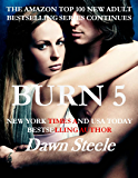 Burn 5: An Extremely Sensual New Adult Romance