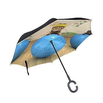 Mnsruu Paraguas invertido Divertido Gatos Doble Capa Plegable Paraguas Resistente al Viento UV Paraguas de Viaje para Mujeres y Hombres: Amazon.es: Deportes ...