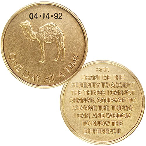HPRS Personalized Custom Engraved - Camel One Day at A Time - Bronze AA (Alcoholics Anonymous)-ACA-AL-ANON-Sober-Sobriety-Birthday-Anniversary-Recovery-Medallion