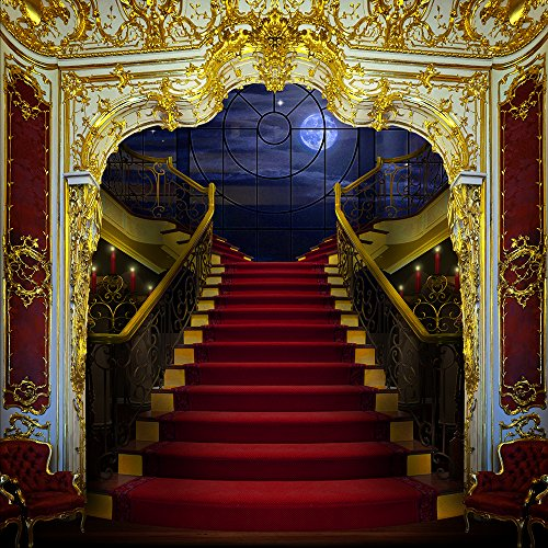 Photography Backdrop - Regal Staircase - 10x10 Ft. Seamless Fabric