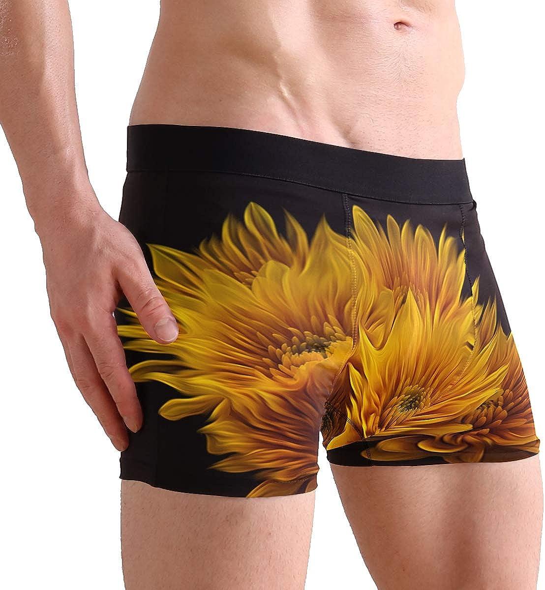 SUABO Mens 2-Pack Boxer Briefs Polyester Underwear Trunk Underwear with 1 Design