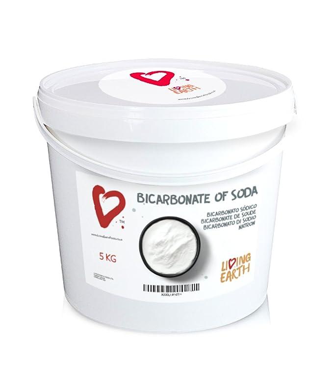 1KG Bolsa - Bicarbonato de Sodio - Living Earth | Excelente Alternativa para la Limpieza del hogar y Cuidado Personal. Limpieza ECOLÓGICA, Libre DE TÓXICOS ...