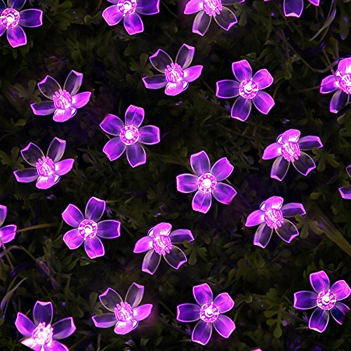 Solar Purple Flower String Lights, 50 LEDs, 23 Feet, Waterproof With Light Sensor made our list of great solar products for camping
