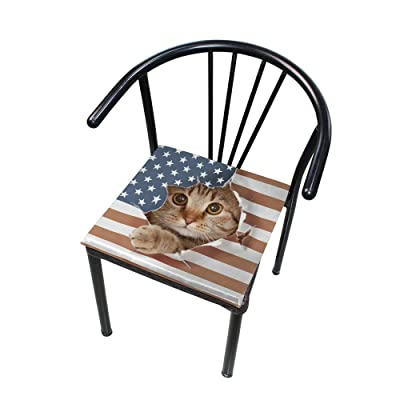 "Bardic HNTGHX Outdoor/Indoor Chair Cushion American Flag Cat Square Memory Foam Seat Pads Cushion for Patio Dining, 16"" x 16"": Home & Kitchen"