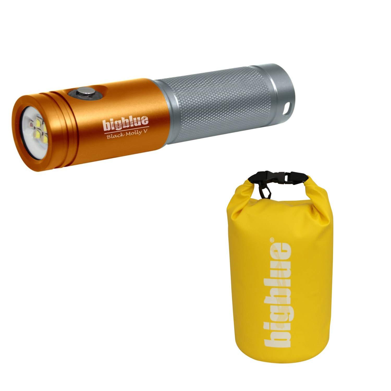 BigBlue AL2600XWP-II 2600 Lumen Extra-Wide Beam LED Dive Light-Orange / Silver