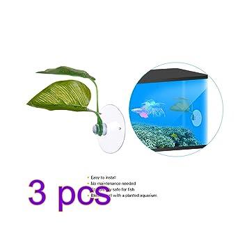 SW-Ning Betta - Almohadillas para hojas de plantas, 3 unidades de ...