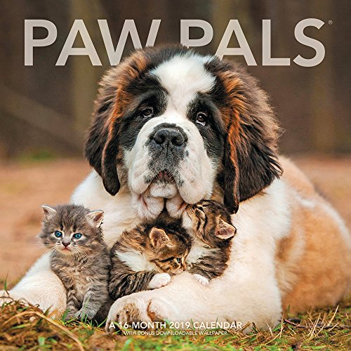 Price comparison product image Paw Pals Wall Calendar (2019)
