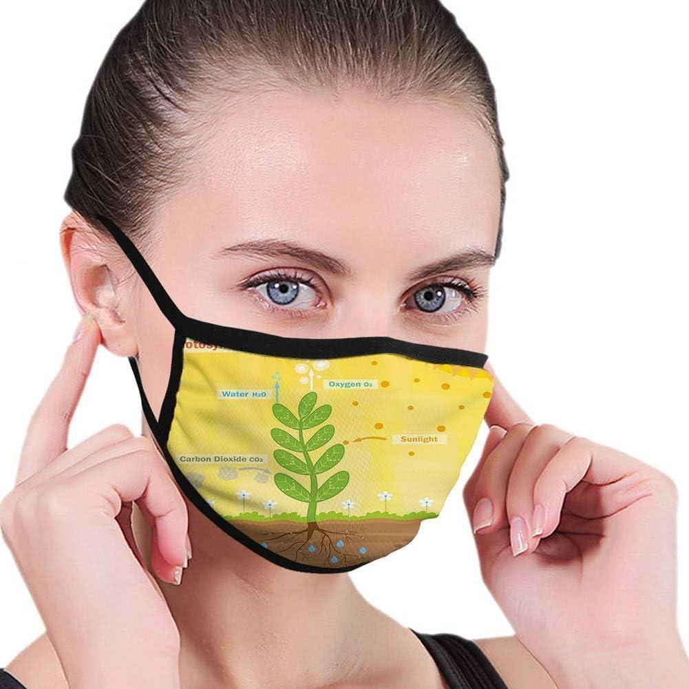 Cubierta facial antipolvo, fotosíntesis de dibujos animados, oxígeno, dióxido de carbono, luz solar y agua, protección bucal, bufanda, escudo para exteriores