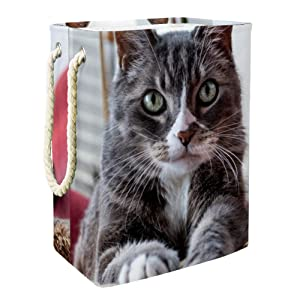 Animal Civet Toy and Accessory Storage Bin,Collapsible Organizer Storage Basket for Home Décor 19.3x11.8x15.9 in