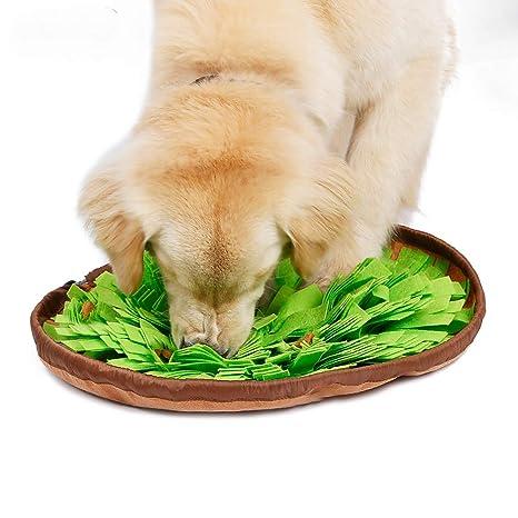Teammao Mascota Cuenco Perro Anti-gulping Tazón de Comida Lenta Divertido Laberinto Ecológico Tela Perro