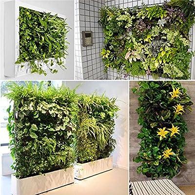 Amazon.com: NUMBERNINE,56 Pockets Vertical Garden Wall Planter ...