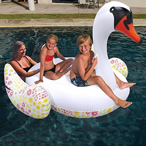 Its Huge Inflatable Swan Pool Float (holds up to 2 people)