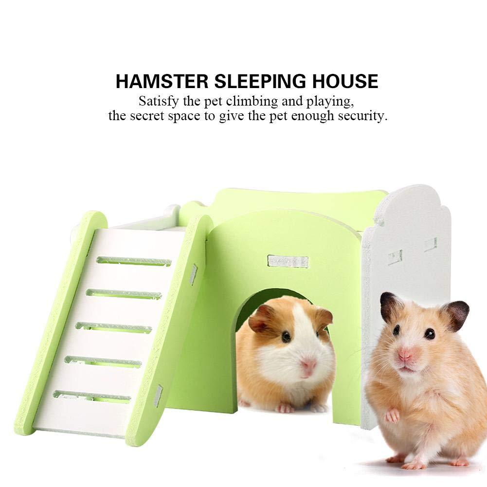 Blue Zerodis Doppio Strato Casa dei Criceti Carino in Legno Letto con Scale Assemblare Hamster House Cuccia Nido per Piccoli Animali Nano Topi Gerbil Porcellino DIndia