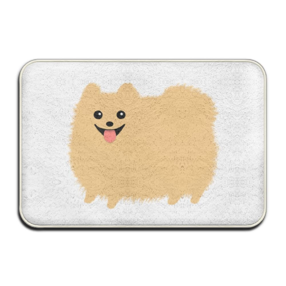 Custom Pomeranian Doormat - Floor Mat Indoor Entrance Rug Decor Mat, BaLin 23.6''x15.7''