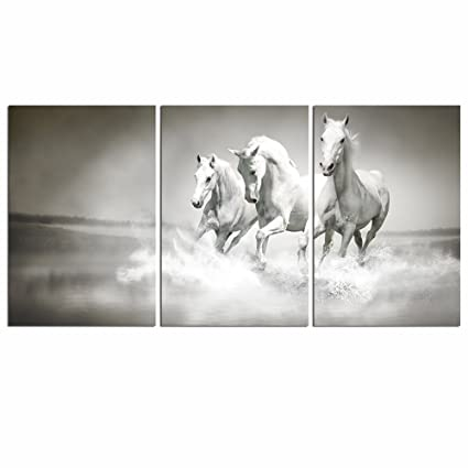 Amazon.com: Live Art Decor - White Horse Picture Print on Canvas ...