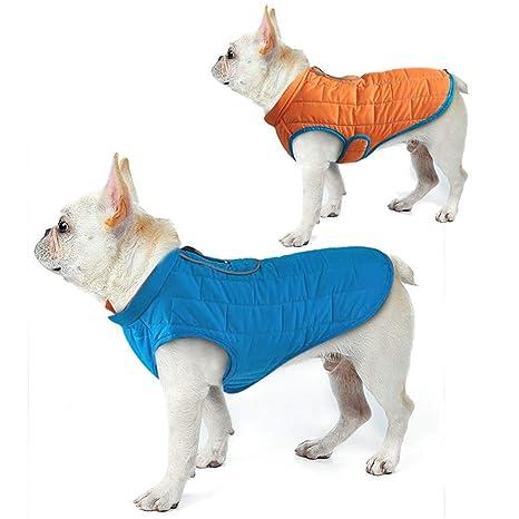 BulzEU - - Chaqueta Reversible para Perro, Impermeable, cálida ...